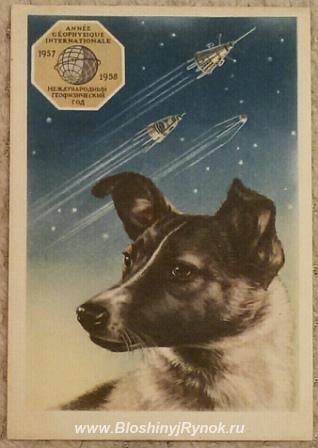 Редкая открытка Филателистическая контора Лайка - первый путешественни .... Россия, Санкт-Петербург